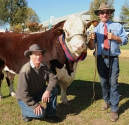 2013-Wodonga-Show-and-Sale37