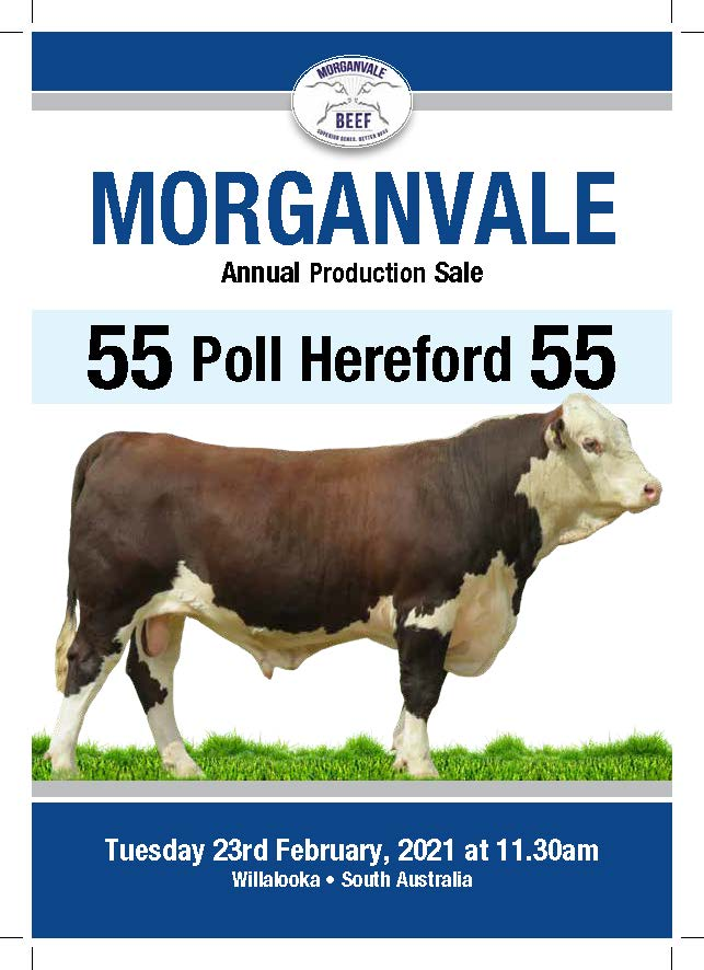 59239-21 Morganvale-Catalogue-P2 (002)_Page_01